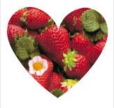Connais-tu les fraises ?