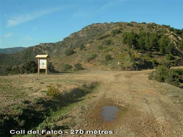 Coll del Falcó - ES-GI-0270