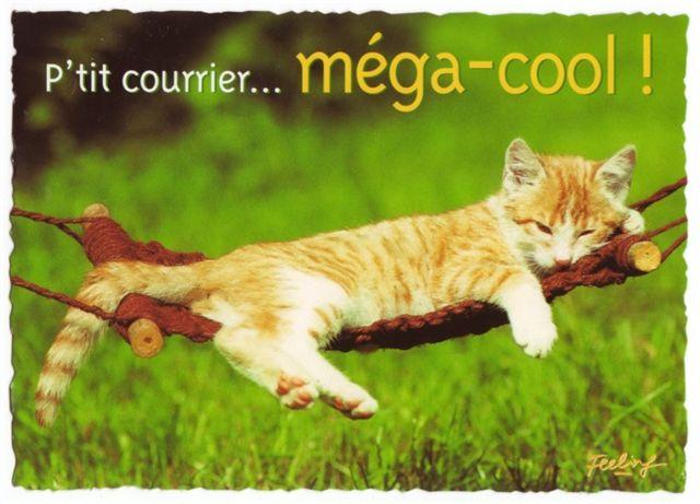 Carte postale a imprimer gratuitement animaux - Animaux humoristiques ...