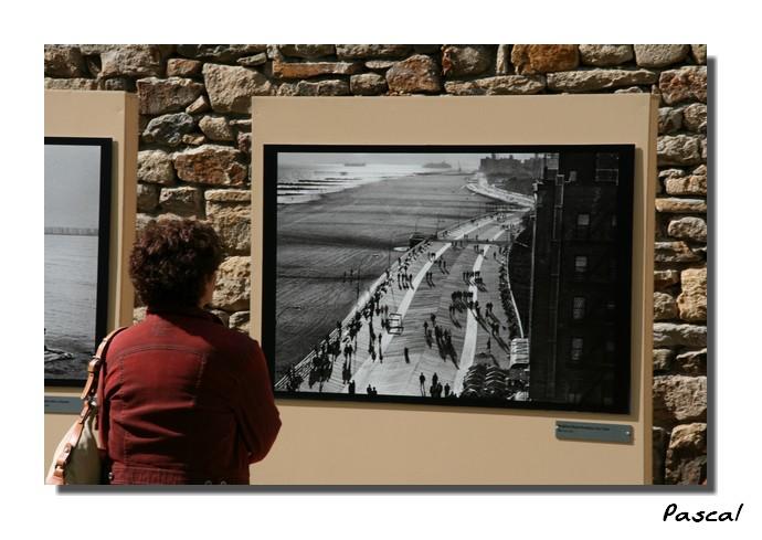 Festival Photo de Mer - Vannes 2008 080501102254185602016463