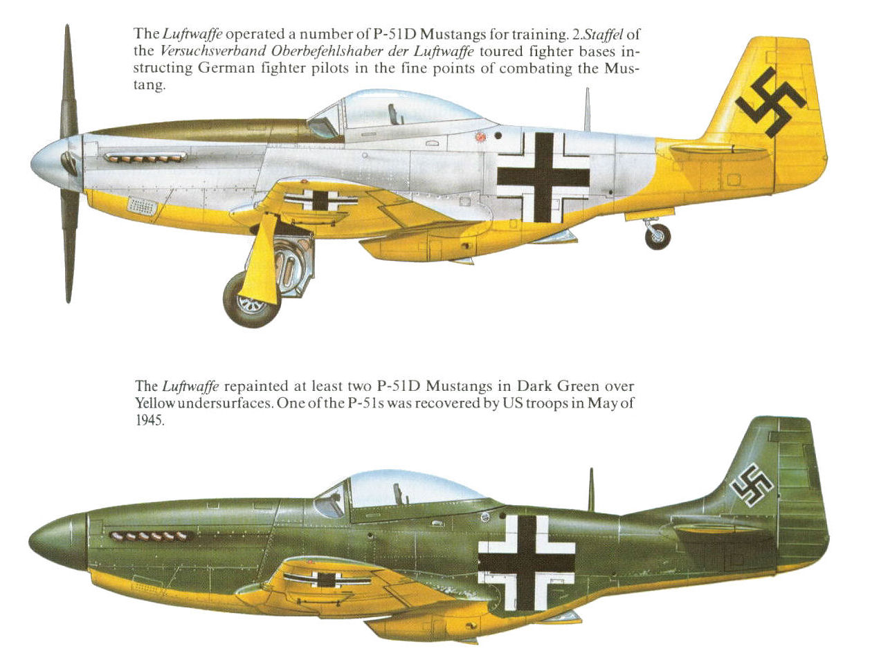 Luftwaffe Colours: Jet Fighters and Rocket Interceptors 1944-1945 Vol. 5 Sectio…