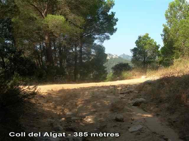 Coll del Algar - ES-T- 371 mètres