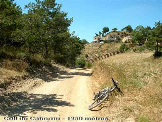 Coll de Caborriu - ES-L-1250 b