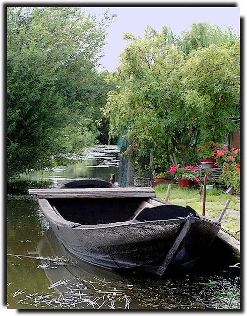 La vieille barque 08082204163045322406779