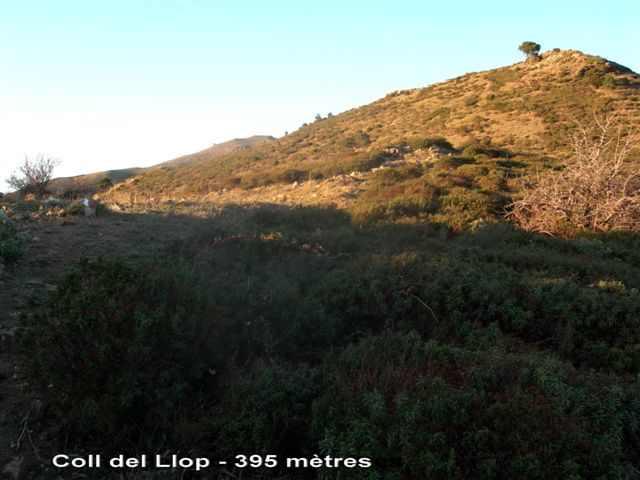 Coll del Llop - ES-GI-0395b