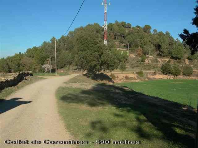 Collet de Coromines - ES-B-0590a