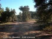 Coll de Bassa - ES-B-0530