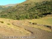 Coll de Sas - ES-L-1490b