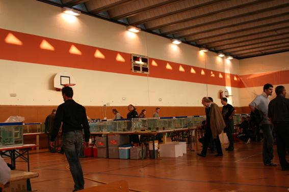 Compte rendu de nos participation au 29è congrés de L'AFC à Champ-le- Bœuf, Laxou/Maxeville (54) du 10au 12 octobre 2008 081013073310432792608145