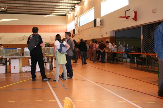Compte rendu de nos participation au 29è congrés de L'AFC à Champ-le- Bœuf, Laxou/Maxeville (54) du 10au 12 octobre 2008 081013073310432792608147
