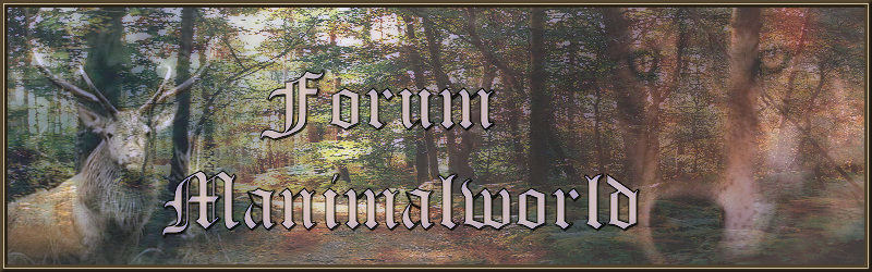 FORUM MANIMALWORLD