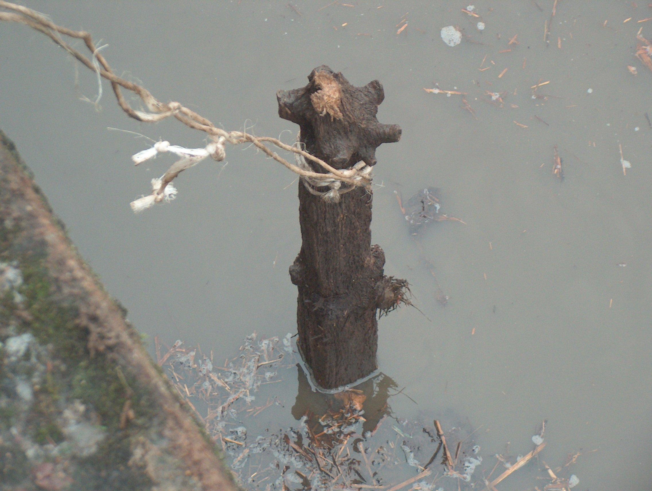 Copie de pêche de l'etang 14dec2008 054