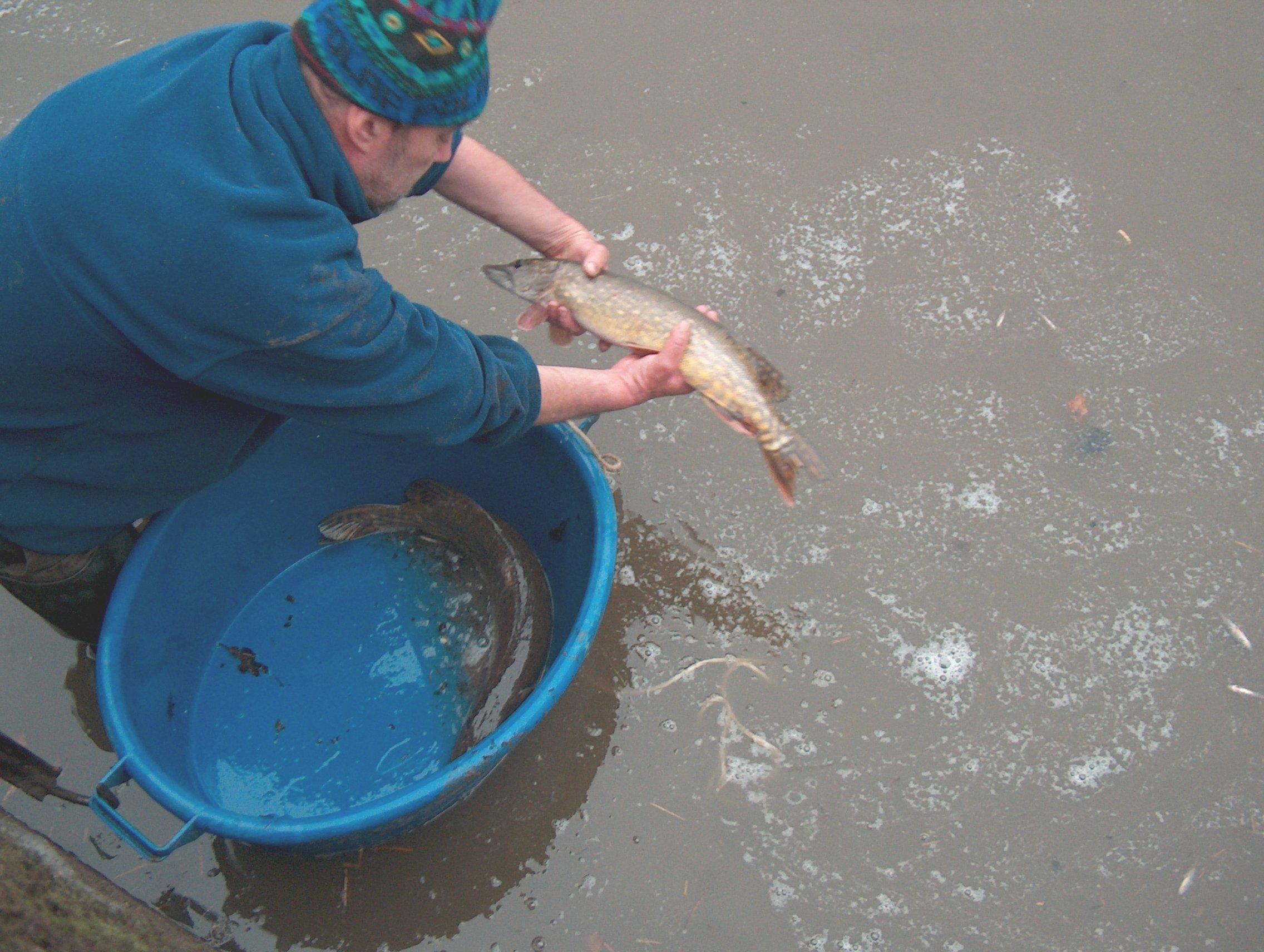 Copie de pêche de l'etang 14dec2008 072