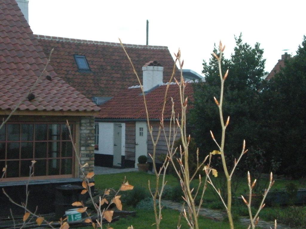 Vlaamse herbergen en oude kroegen 081215111318440052877481