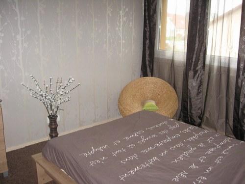 Chambre de Laurine 16ans(photo p2) 081228071247506172925020