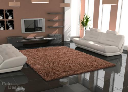 Mon salon dans ma nouvelle maison for Couleur de peinture pour salon marron