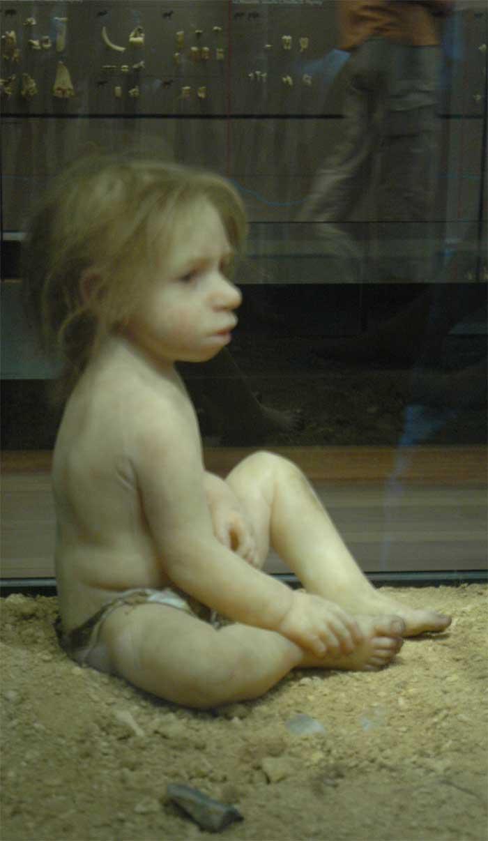 Musée de la Préhistoire - les Eyzies de tayac 090117104931111023010133