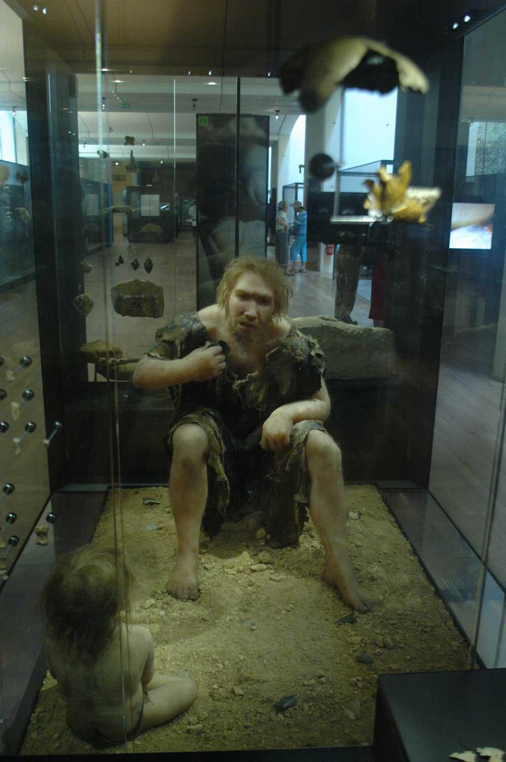 Musée de la Préhistoire - les Eyzies de tayac 090117105129111023010152