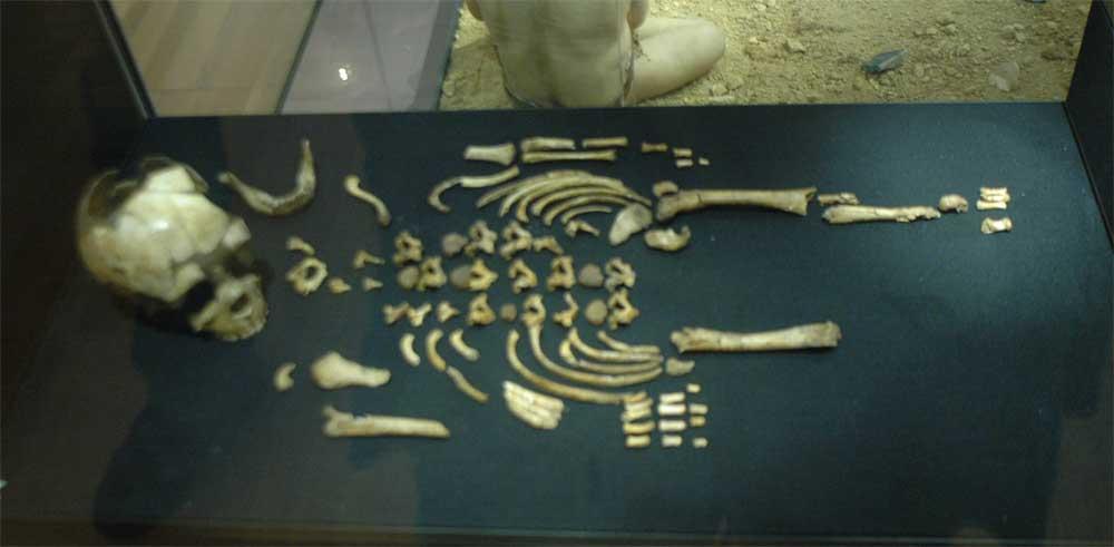 Musée de la Préhistoire - les Eyzies de tayac 090118122945111023011801