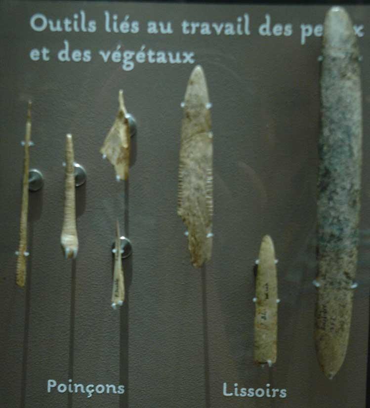Musée de la Préhistoire - les Eyzies de tayac 090121110441111023030387