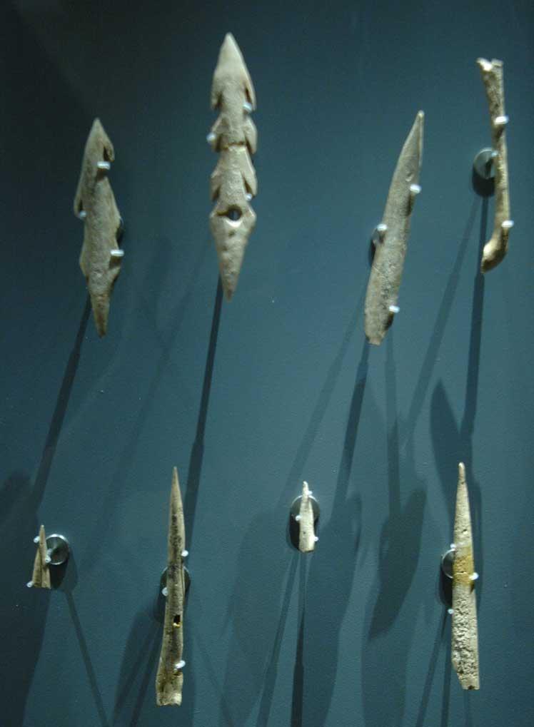 Musée de la Préhistoire - les Eyzies de tayac 090121110700111023030388