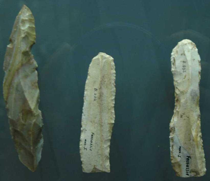 Musée de la Préhistoire - les Eyzies de tayac 090122050343111023037093