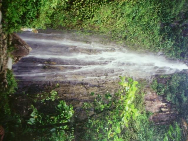 Une cascade, le bruit de l\'eau, nos sens en eveille 090126071333468093057812