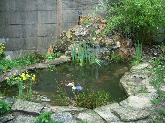 Une cascade, le bruit de l\'eau, nos sens en eveille 090126102359468093058997