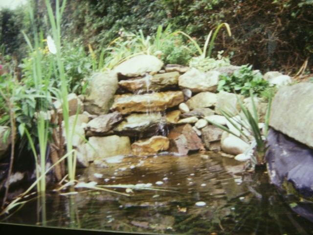 Une cascade le bruit de l 39 eau nos sens en eveille for Bassin jardin avec cascade