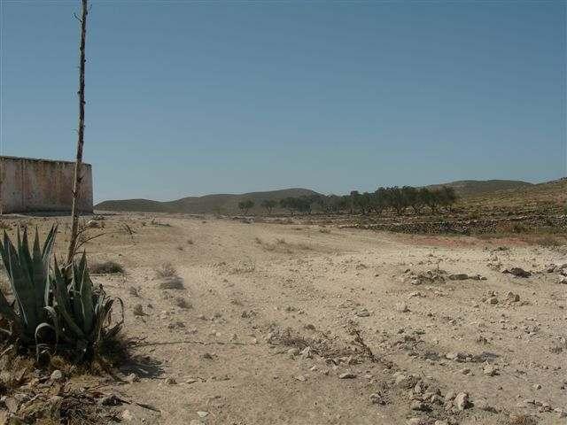 Collado de Las Huertas - ES-AL- 232 mètres