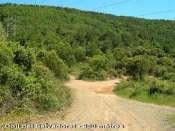 Coll del Salvadoret - ES-T-0980 b