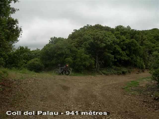 Coll del Palau - ES-T-0941b