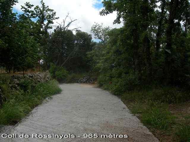 Coll de Rossinyols - ES-T-0965c