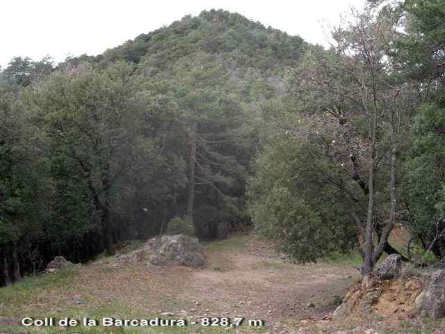 Coll de Barcadura - ES-GI-0830a