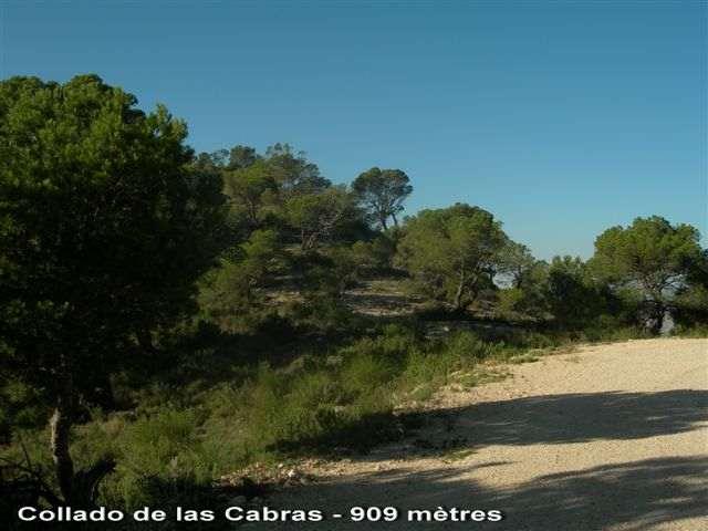 Collado de Las Cabras ES-V- 909 mètres