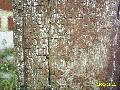 Frans-Vlaamse en oude Standaardnederlandse teksten en inscripties Mini_090304051310440053258303