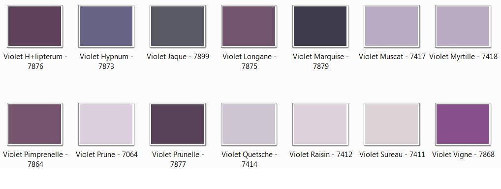 le trombi des couleurs (la seigneurie) 090305023229506173262759