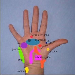 Douleur de la main : symptmes, traitement, dfinition