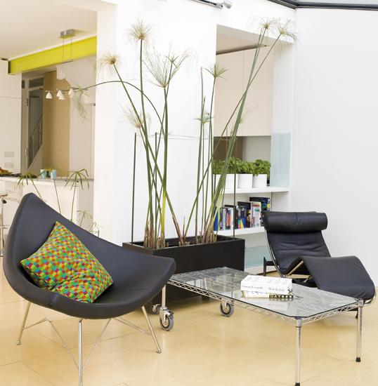 Bac rectangulaire pour plantes d 39 int rieur for Bac design interieur
