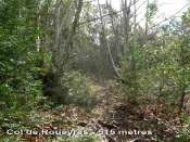 Col de Roueyras par Saint-Etienne d'Albagnan