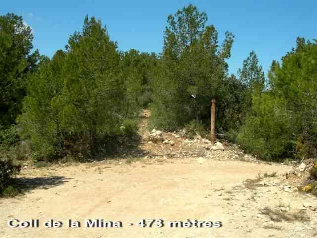 Coll de la Mina - ES-T- 483 mètres