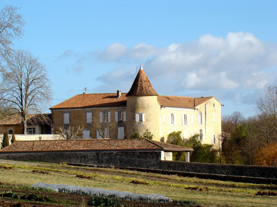 viree08 ECT - h Blanzaguet 16 0201 chateau des Galard