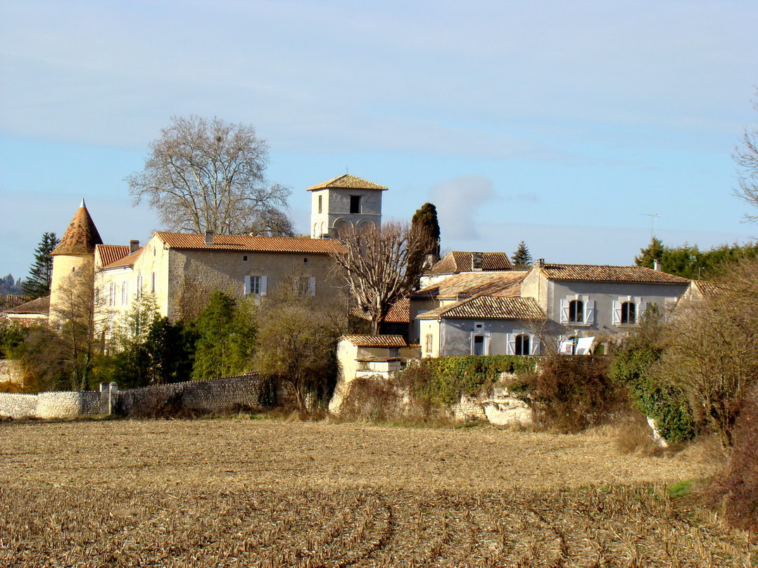 viree08 ECT - h Blanzaguet 16 0205 chateau des Galard