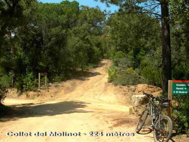 Collet del Molinot - ES-GI-0224