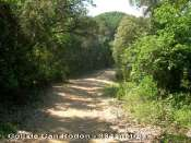 Coll de Can Rodon - ES-B-0330