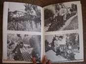 Les livres Disney - Page 6 Mini_090509041519596163627374