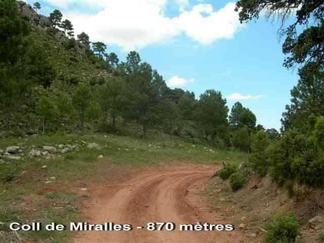 Coll de Miralles - ES-T-0873