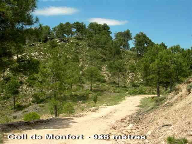 Coll de Monfort - ES-T-0938