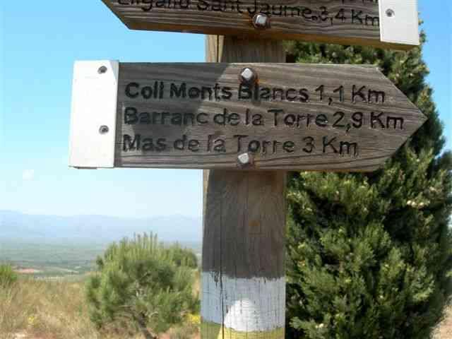 Coll Monts Blancs - ES-T- 0323 mètres (Panneau directionnel)