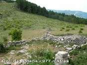 Coll de Botana - ES-T-0980